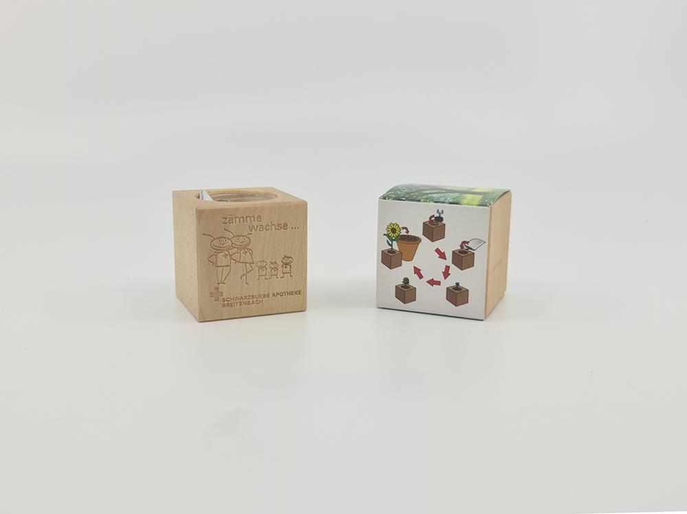 Cubo in legno con semi